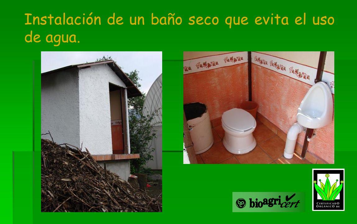 Instalación de un baño seco que evita el uso de agua.