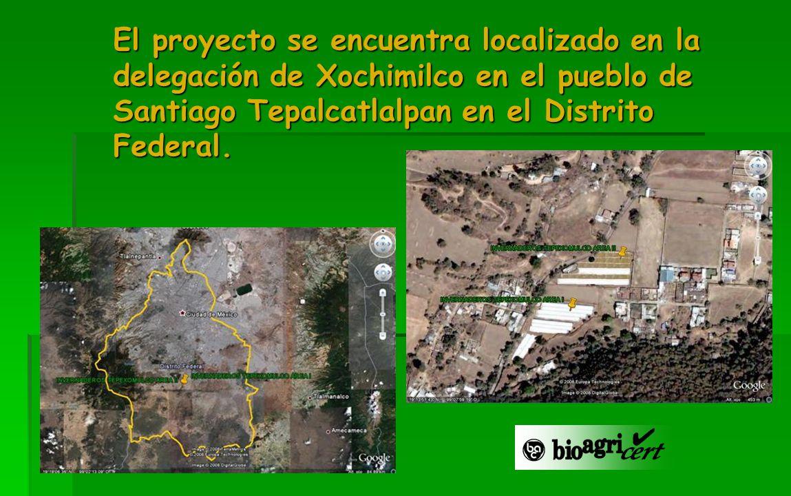 El proyecto se encuentra localizado en la delegación de Xochimilco en el pueblo de Santiago Tepalcatlalpan en el Distrito Federal.