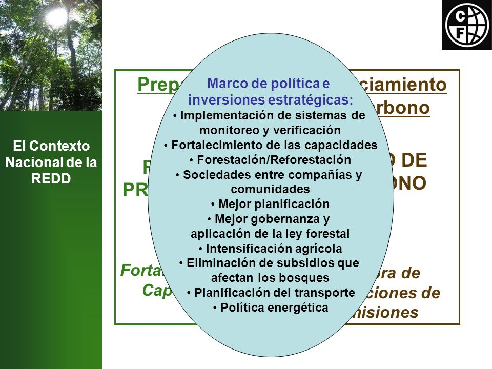 El Contexto Nacional de la REDD Preparación FONDO DE PREPARACIÓN Fortalecimiento de Capacidades Financiamiento de Carbono FONDO DE CARBONO Compra de Reducciones de Emisiones Marco de política e inversiones estratégicas: Implementación de sistemas de monitoreo y verificación Fortalecimiento de las capacidades Forestación/Reforestación Sociedades entre compañías y comunidades Mejor planificación Mejor gobernanza y aplicación de la ley forestal Intensificación agrícola Eliminación de subsidios que afectan los bosques Planificación del transporte Política energética