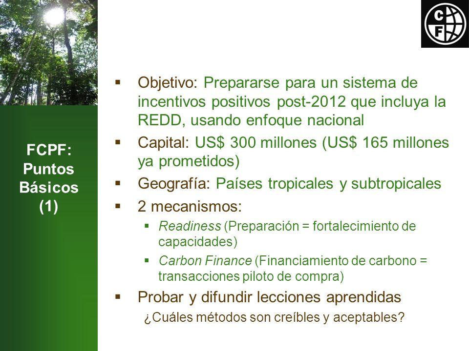 FCPF: Puntos Básicos (1) Objetivo: Prepararse para un sistema de incentivos positivos post-2012 que incluya la REDD, usando enfoque nacional Capital: US$ 300 millones (US$ 165 millones ya prometidos) Geografía: Países tropicales y subtropicales 2 mecanismos: Readiness (Preparación = fortalecimiento de capacidades) Carbon Finance (Financiamiento de carbono = transacciones piloto de compra) Probar y difundir lecciones aprendidas ¿Cuáles métodos son creíbles y aceptables