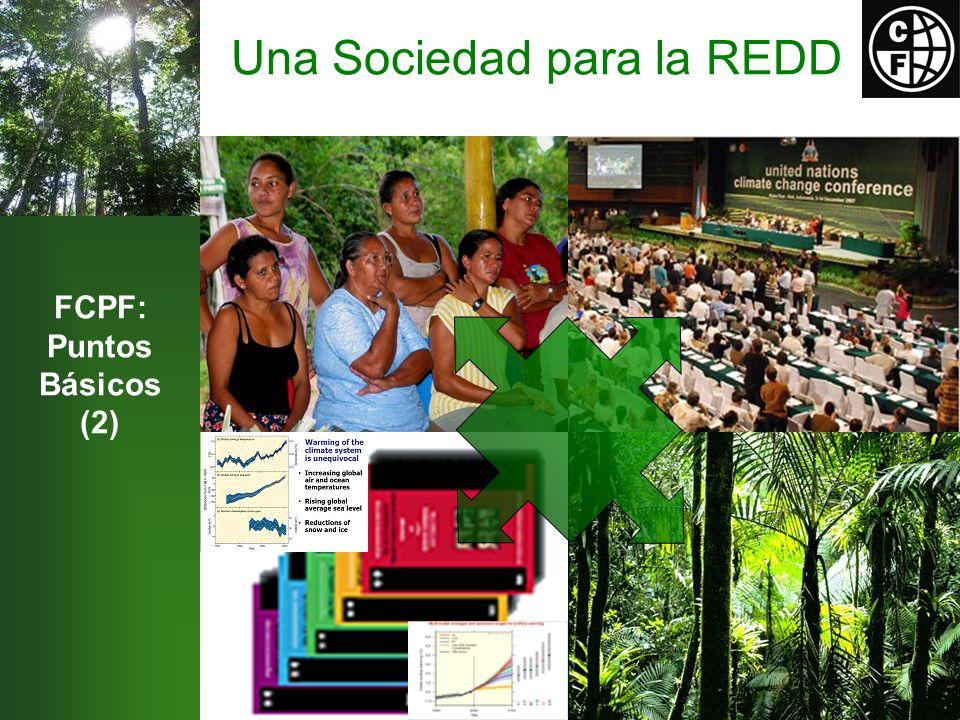 Una Sociedad para la REDD FCPF: Puntos Básicos (2)