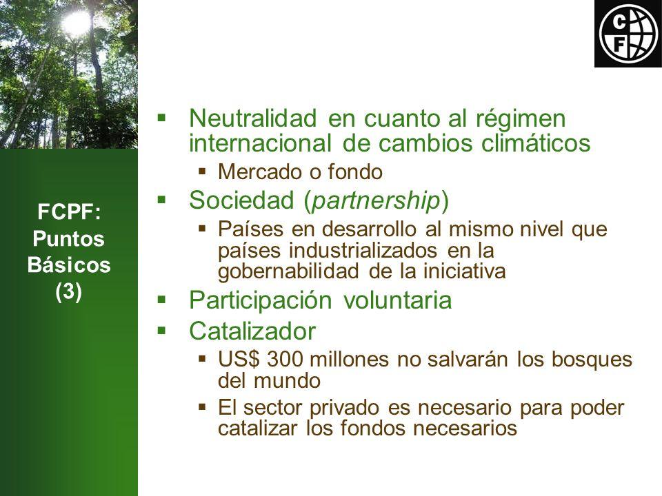Experimentación Uso de las pautas del IPCC Métodos para definición de escenarios de referencia Varias formas de pago de incentivos Deforestación y degradación de bosques Equilibrio regional en la selección de los países Generará informaciones para la CMNUCC Alineamiento con las modalidades de la CMNUCC a la medida en que ésas se desarrollen Enfoque nacional Estructura de contabilidad nacional Posibilidad para la implementación de proyectos sub- nacionales Integración en el conjunto de políticas y medidas ya existentes Aplicación de las políticas de salvaguarda del Banco Mundial Análisis Estratégico Ambiental podría ser útil en la fase de diseño de la Estrategia REDD bajo el Mecanismo de Preparación FCPF: Puntos Básicos (4)