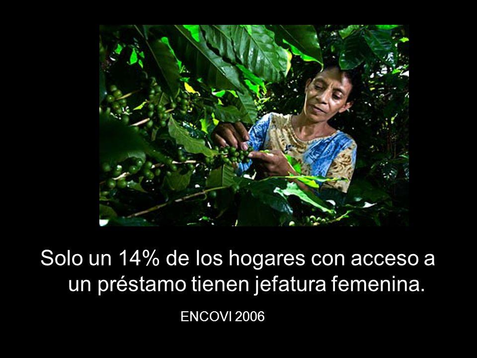 La forma en que reaccionen las mujeres en el continente ante la crisis económica dependerá en gran medida de el acceso que tengan a los recursos económicos CEPAL