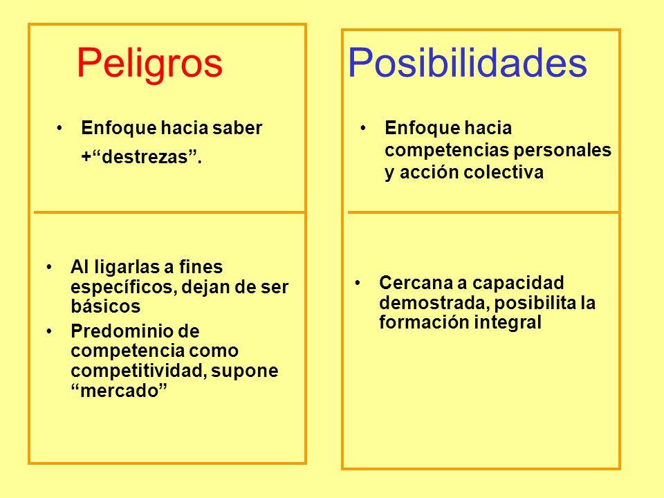 Peligros Posibilidades Enfoque hacia saber +destrezas.