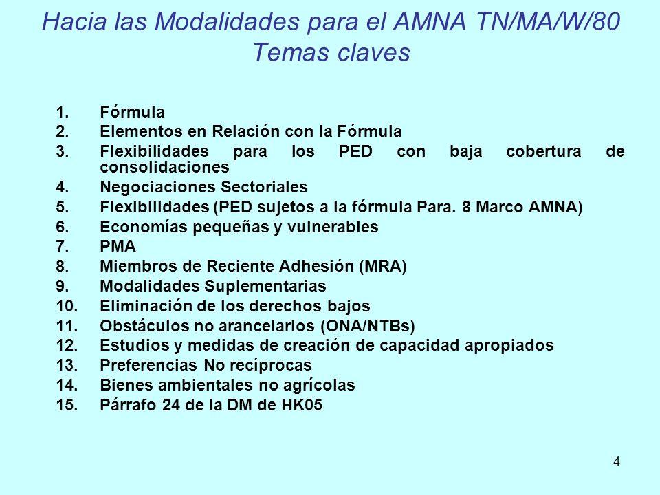 4 Hacia las Modalidades para el AMNA TN/MA/W/80 Temas claves 1.Fórmula 2.Elementos en Relación con la Fórmula 3.Flexibilidades para los PED con baja c