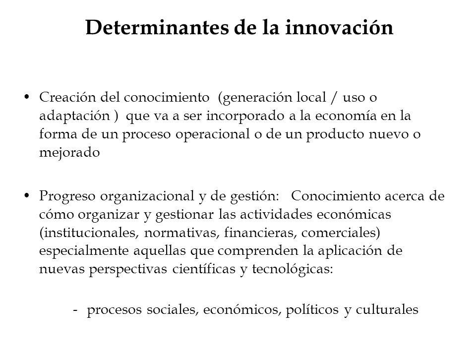 Determinantes de la innovación Creación del conocimiento (generación local / uso o adaptación ) que va a ser incorporado a la economía en la forma de
