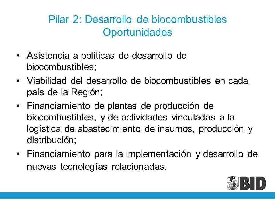 Pilar 2: Desarrollo de biocombustibles Oportunidades Asistencia a políticas de desarrollo de biocombustibles; Viabilidad del desarrollo de biocombusti