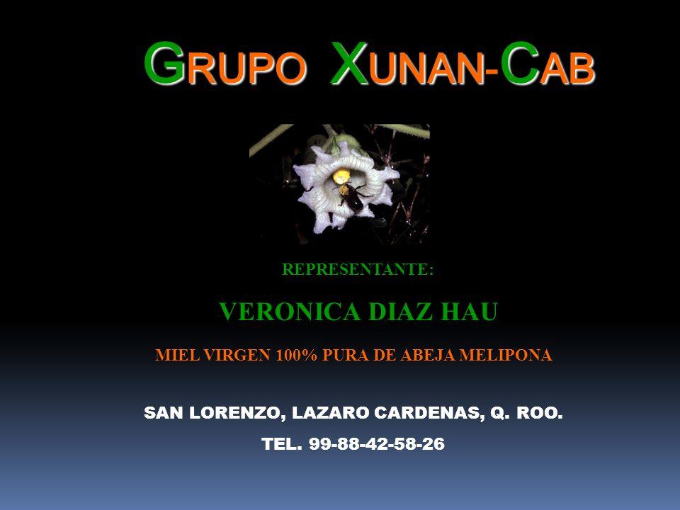 G RUPO X UNAN C AB G RUPO: X UNAN- C AB REPRESENTANTE: VERONICA DIAZ HAU SAN LORENZO, LAZARO CARDENAS, Q. ROO. TEL. 99-88-42-58-26 MIEL VIRGEN 100% PU