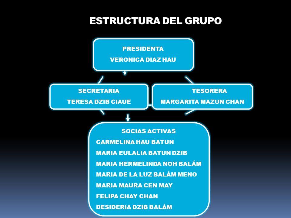 ESTRUCTURA DEL GRUPO PRESIDENTA VERONICA DIAZ HAU TESORERA MARGARITA MAZUN CHAN SECRETARIA TERESA DZIB CIAUE SOCIAS ACTIVAS CARMELINA HAU BATUN MARIA