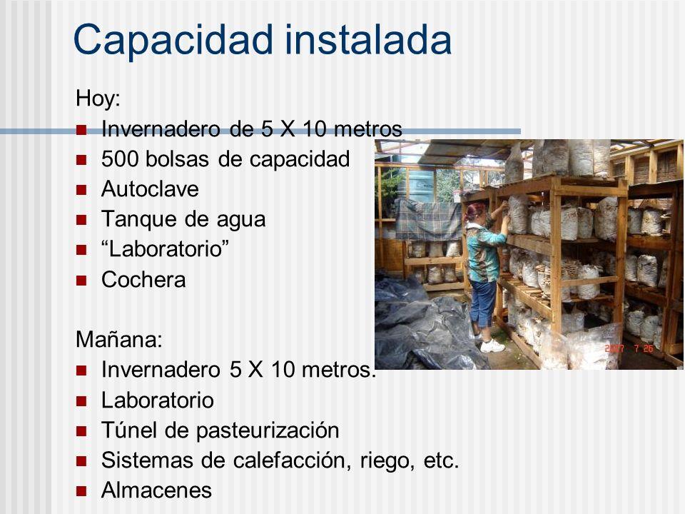 Capacidad instalada Hoy: Invernadero de 5 X 10 metros 500 bolsas de capacidad Autoclave Tanque de agua Laboratorio Cochera Mañana: Invernadero 5 X 10