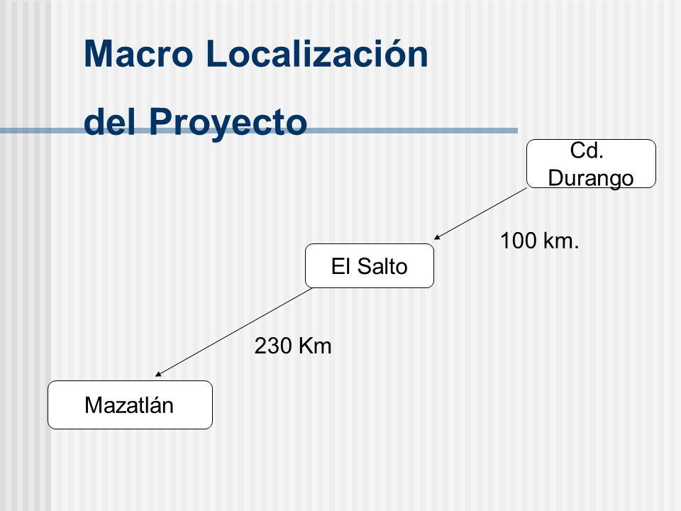 Cd. Durango El Salto Mazatlán 100 km. 230 Km Macro Localización del Proyecto