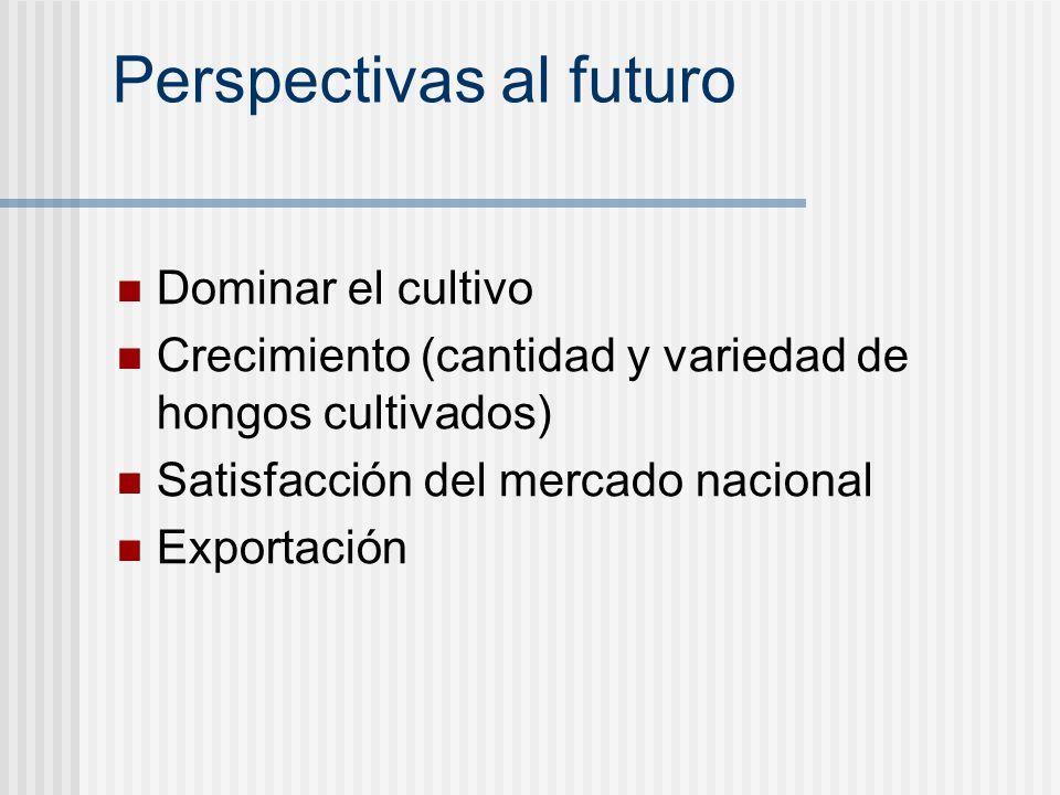 Perspectivas al futuro Dominar el cultivo Crecimiento (cantidad y variedad de hongos cultivados) Satisfacción del mercado nacional Exportación