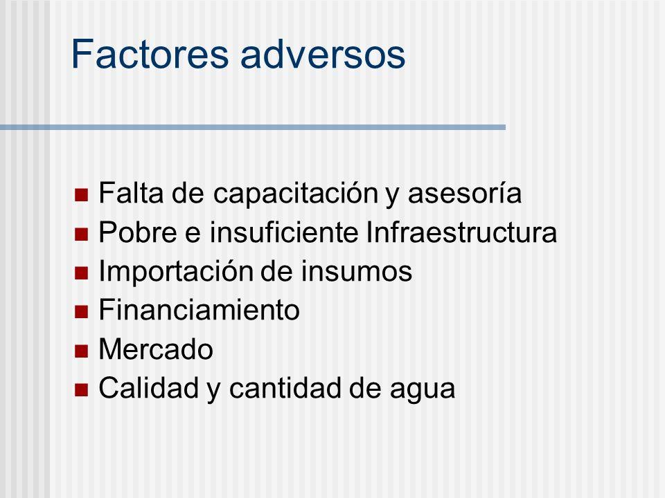 Factores adversos Falta de capacitación y asesoría Pobre e insuficiente Infraestructura Importación de insumos Financiamiento Mercado Calidad y cantid