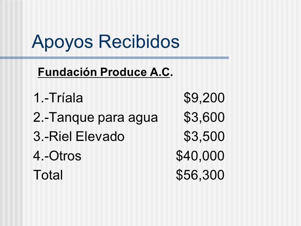 Apoyos Recibidos 1.-Tríala$9,200 2.-Tanque para agua $3,600 3.-Riel Elevado$3,500 4.-Otros $40,000 Total $56,300 Fundación Produce A.C.