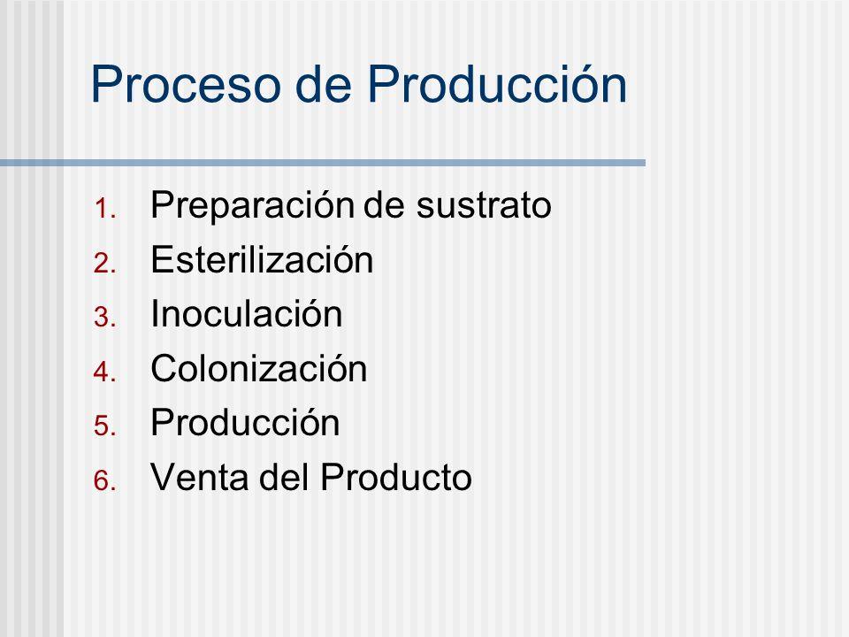 Proceso de Producción 1. Preparación de sustrato 2. Esterilización 3. Inoculación 4. Colonización 5. Producción 6. Venta del Producto