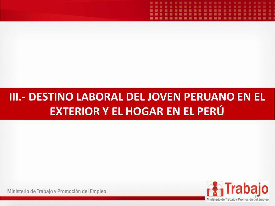 III.- DESTINO LABORAL DEL JOVEN PERUANO EN EL EXTERIOR Y EL HOGAR EN EL PERÚ 12