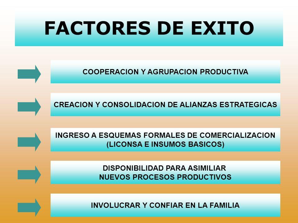 FACTORES LIMITANTES ACTITUD INDIVIDUALISTA LIMITADA DE INFRAESTRUCTURA FALTA DE ASISTENCIA TECNICA MALOS HABITOS PRODUCTIVOS DESCONFIANZA EN PROYECTOS COOPERATIVOS