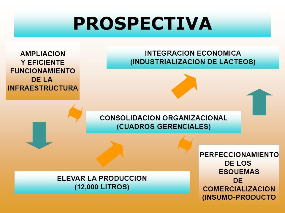 FACTORES DE EXITO COOPERACION Y AGRUPACION PRODUCTIVA CREACION Y CONSOLIDACION DE ALIANZAS ESTRATEGICAS INGRESO A ESQUEMAS FORMALES DE COMERCIALIZACION (LICONSA E INSUMOS BASICOS) DISPONIBILIDAD PARA ASIMILIAR NUEVOS PROCESOS PRODUCTIVOS INVOLUCRAR Y CONFIAR EN LA FAMILIA