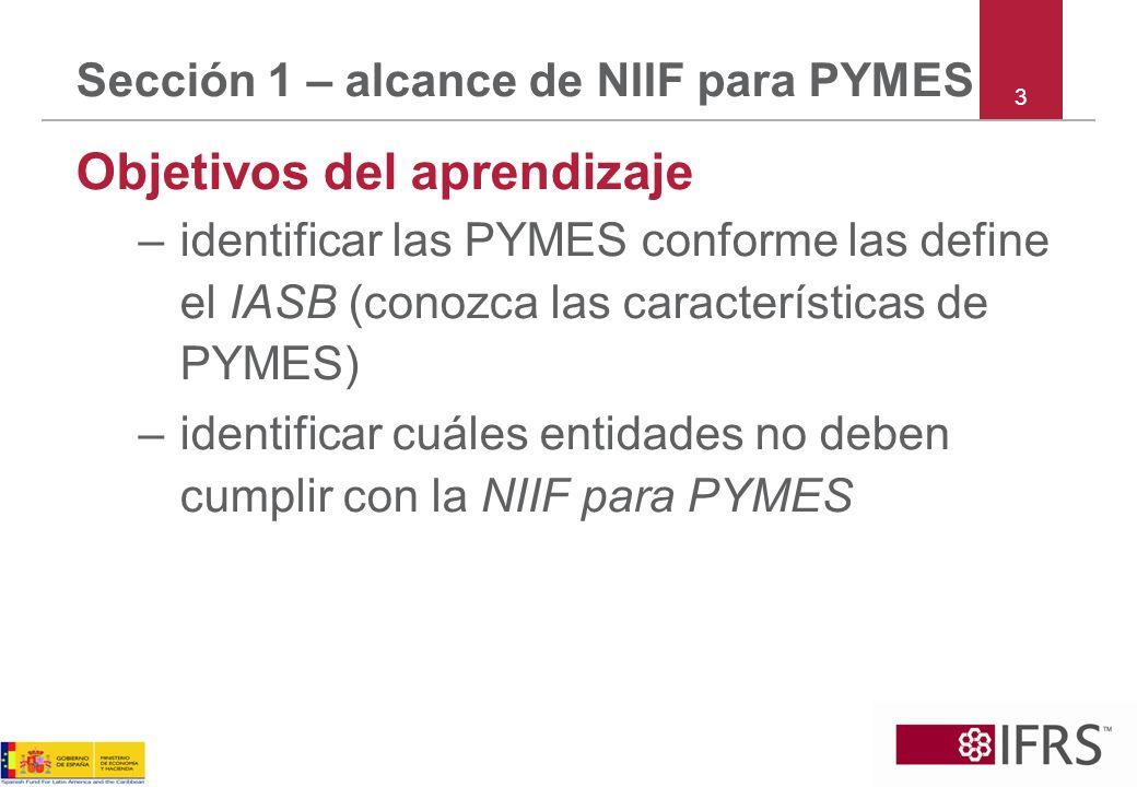 Sección 1 – ¿puedo utilizar NIIF para PYMES.
