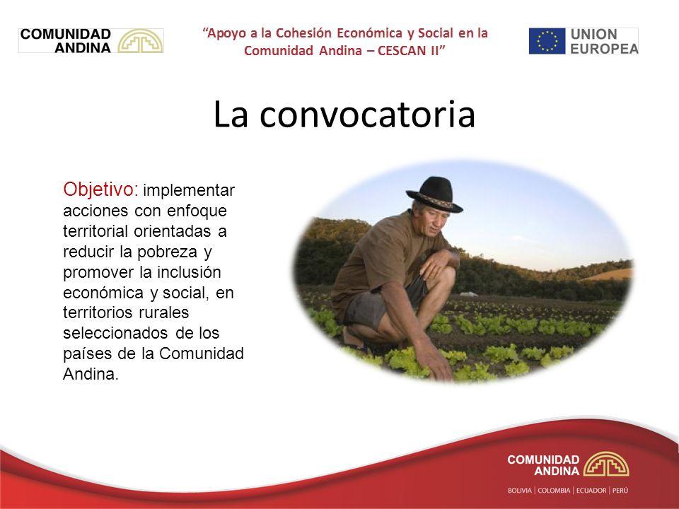 La convocatoria Objetivo: implementar acciones con enfoque territorial orientadas a reducir la pobreza y promover la inclusión económica y social, en territorios rurales seleccionados de los países de la Comunidad Andina.