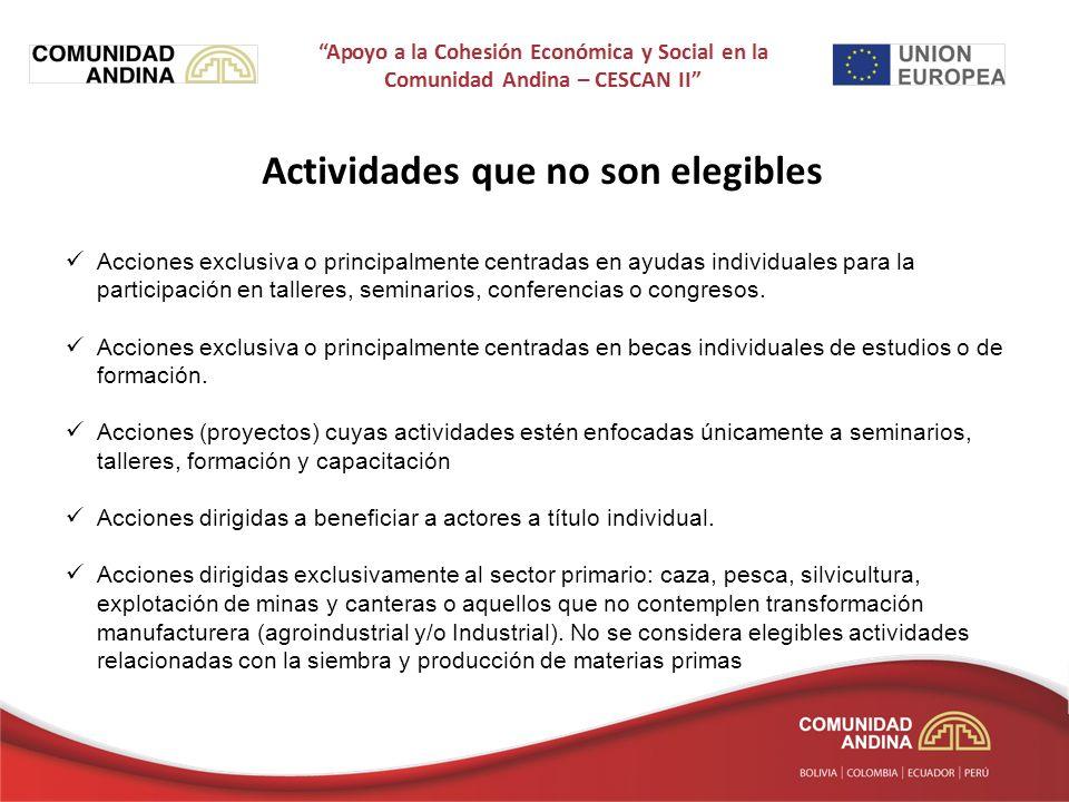 Actividades que no son elegibles Acciones exclusiva o principalmente centradas en ayudas individuales para la participación en talleres, seminarios, conferencias o congresos.