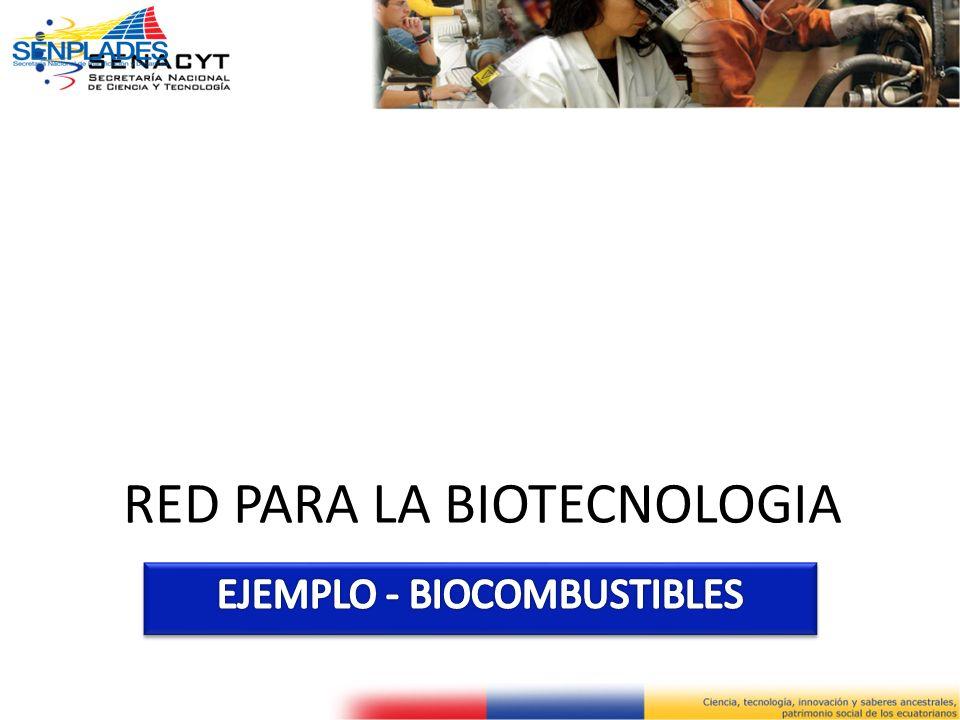 RED PARA LA BIOTECNOLOGIA