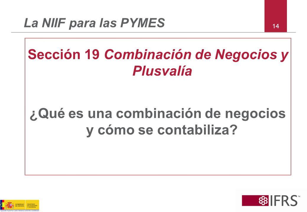 14 La NIIF para las PYMES Sección 19 Combinación de Negocios y Plusvalía ¿Qué es una combinación de negocios y cómo se contabiliza?