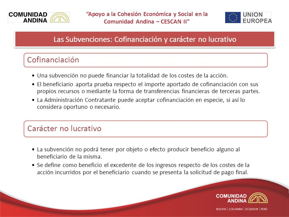 Las Subvenciones: Cofinanciación y carácter no lucrativo Cofinanciación Una subvención no puede financiar la totalidad de los costes de la acción.