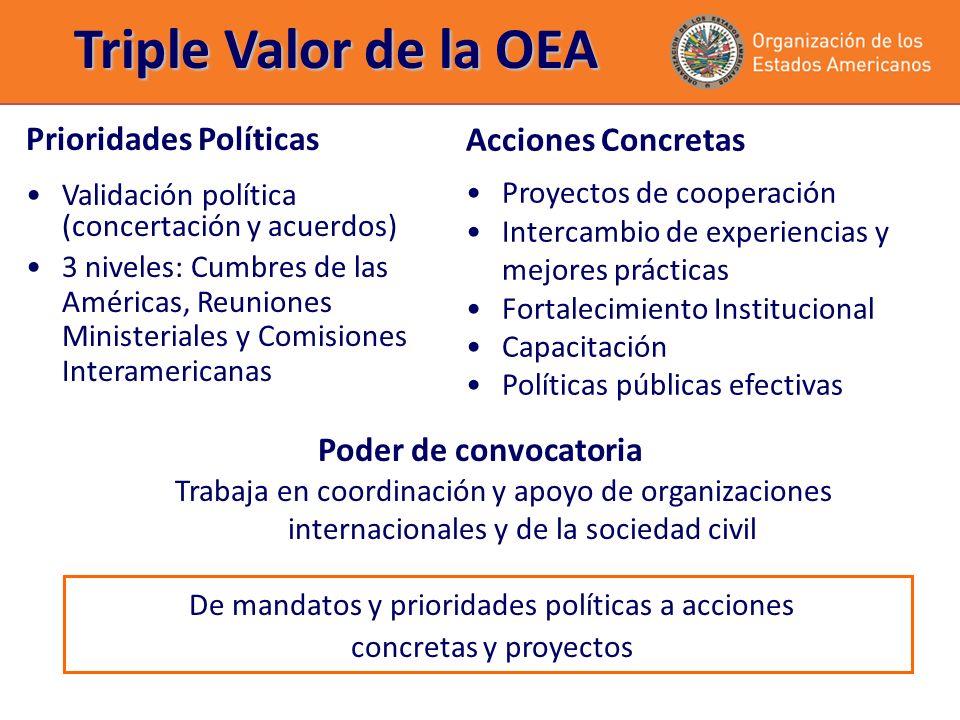 Triple Valor de la OEA Prioridades Políticas Validación política (concertación y acuerdos) 3 niveles: Cumbres de las Américas, Reuniones Ministeriales y Comisiones Interamericanas Acciones Concretas Proyectos de cooperación Intercambio de experiencias y mejores prácticas Fortalecimiento Institucional Capacitación Políticas públicas efectivas Poder de convocatoria Trabaja en coordinación y apoyo de organizaciones internacionales y de la sociedad civil De mandatos y prioridades políticas a acciones concretas y proyectos