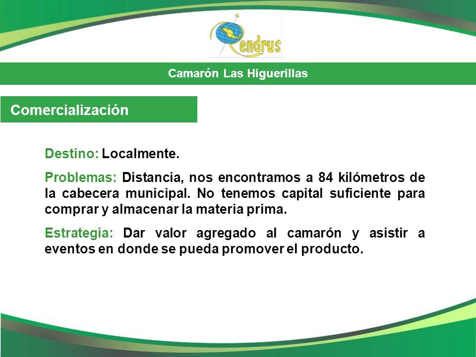 Camarón Las Higuerillas Comercialización Destino: Localmente. Problemas: Distancia, nos encontramos a 84 kilómetros de la cabecera municipal. No tenem
