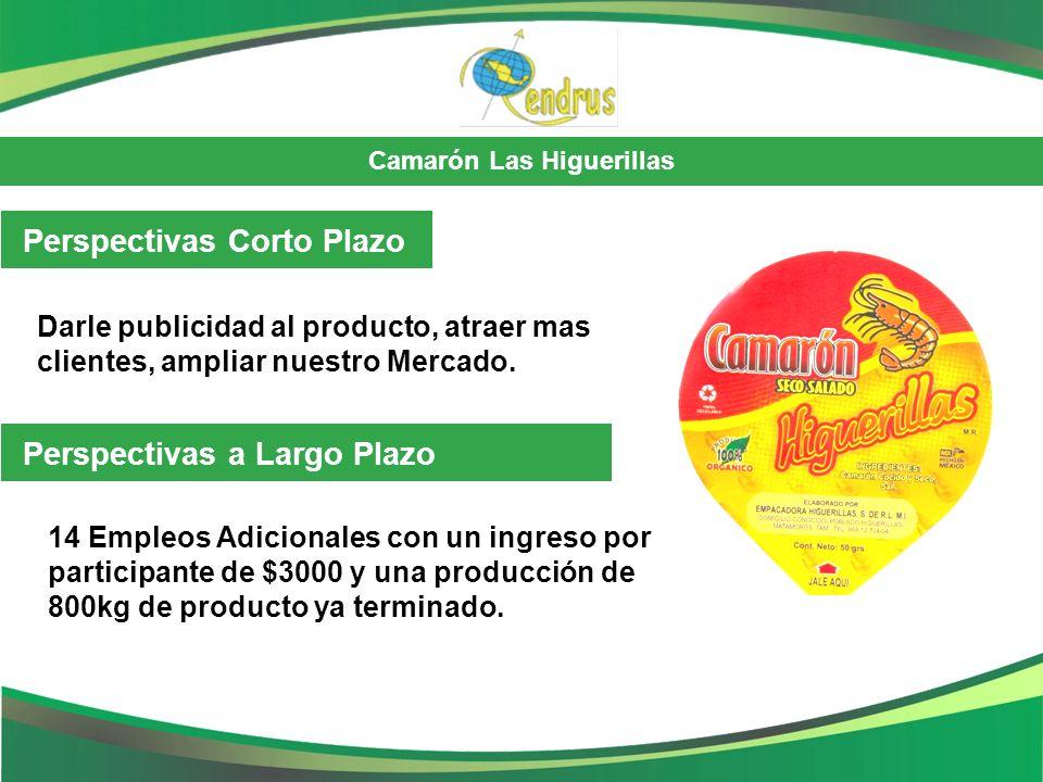 Camarón Las Higuerillas Perspectivas Corto Plazo Darle publicidad al producto, atraer mas clientes, ampliar nuestro Mercado. 14 Empleos Adicionales co