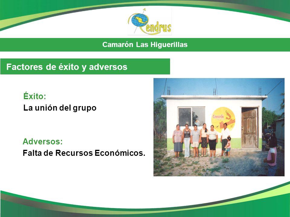 Camarón Las Higuerillas Éxito: La unión del grupo Adversos: Falta de Recursos Económicos. Factores de éxito y adversos