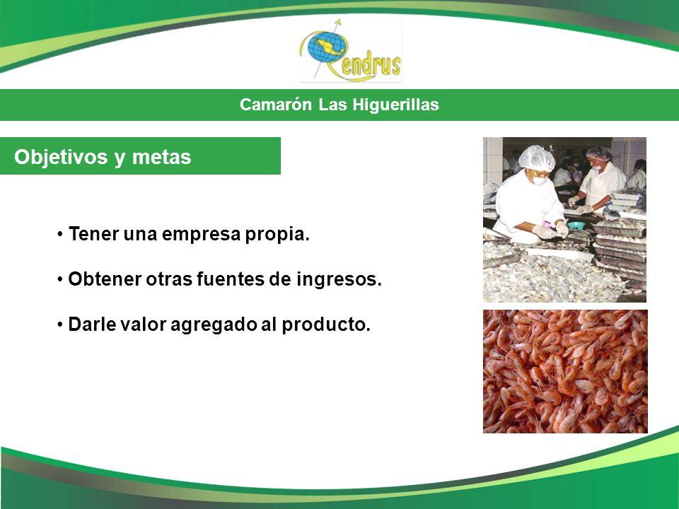 Camarón Las Higuerillas Objetivos y metas Tener una empresa propia. Obtener otras fuentes de ingresos. Darle valor agregado al producto.