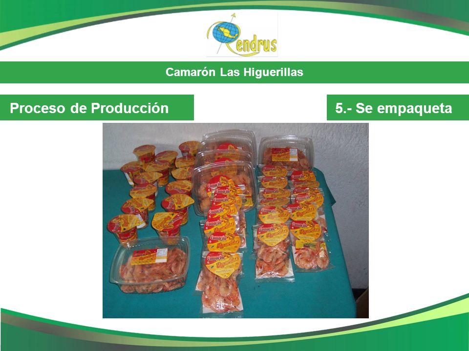 Camarón Las Higuerillas Comercialización Destino: Localmente.