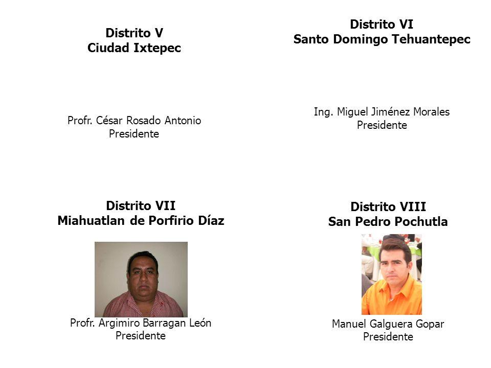 Distrito V Ciudad Ixtepec Profr. César Rosado Antonio Presidente Distrito VI Santo Domingo Tehuantepec Ing. Miguel Jiménez Morales Presidente Distrito