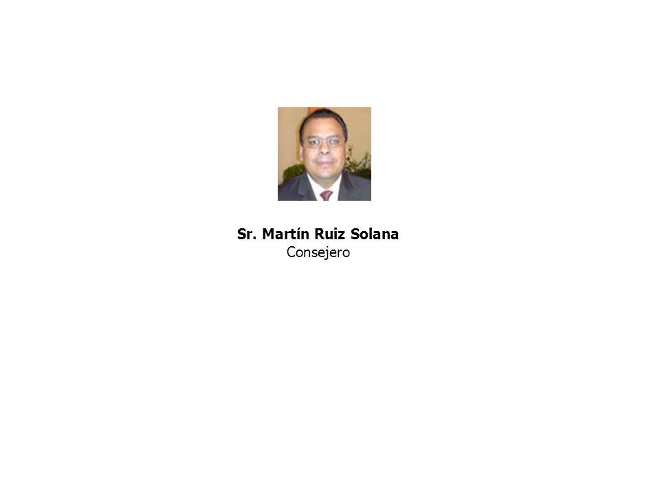 Sr. Martín Ruiz Solana Consejero
