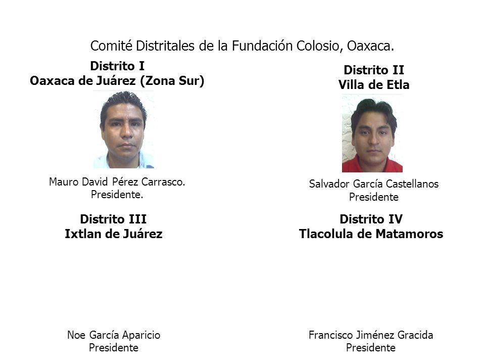 Comité Distritales de la Fundación Colosio, Oaxaca. Distrito I Oaxaca de Juárez (Zona Sur) Mauro David Pérez Carrasco. Presidente. Distrito II Villa d