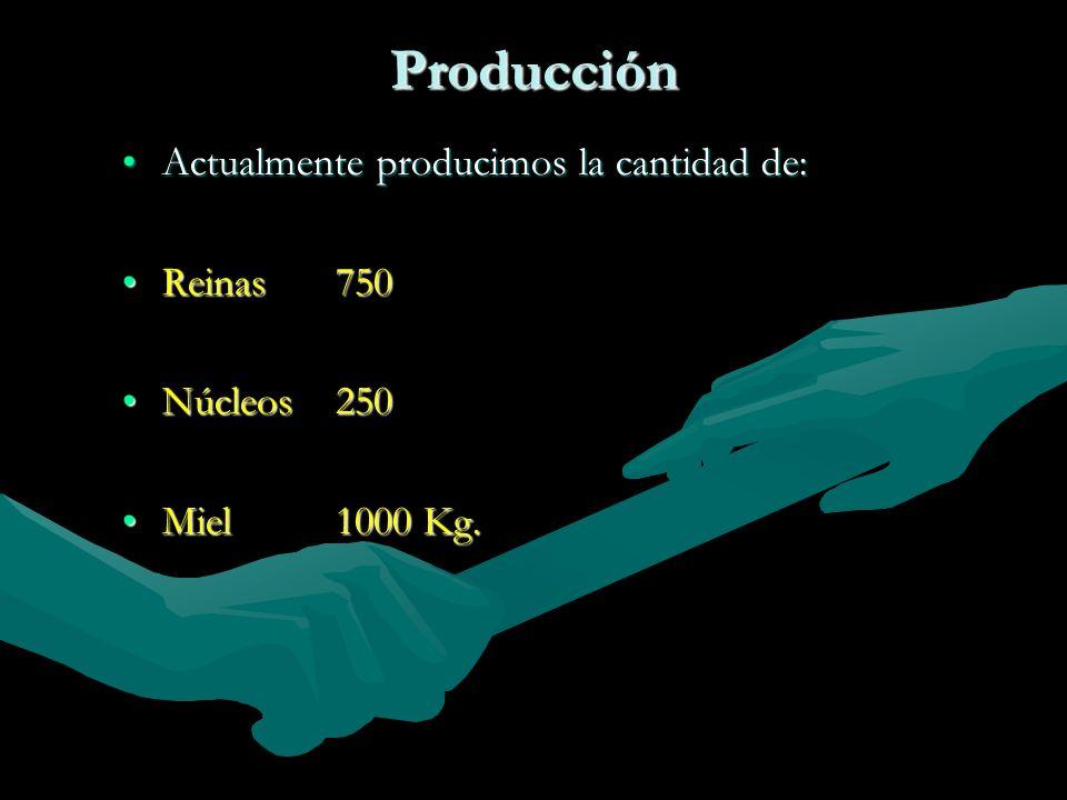 Producción Actualmente producimos la cantidad de:Actualmente producimos la cantidad de: Reinas750Reinas750 Núcleos250Núcleos250 Miel1000 Kg.Miel1000 K