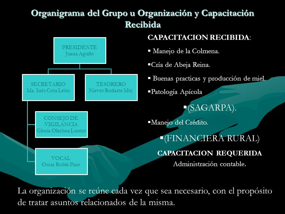 Organigrama del Grupo u Organización y Capacitación Recibida PRESIDENTE Juana Agudo SECRETARIO Ma. Inés Cota León CONSEJO DE VIGILANCIA Gloria Olachea