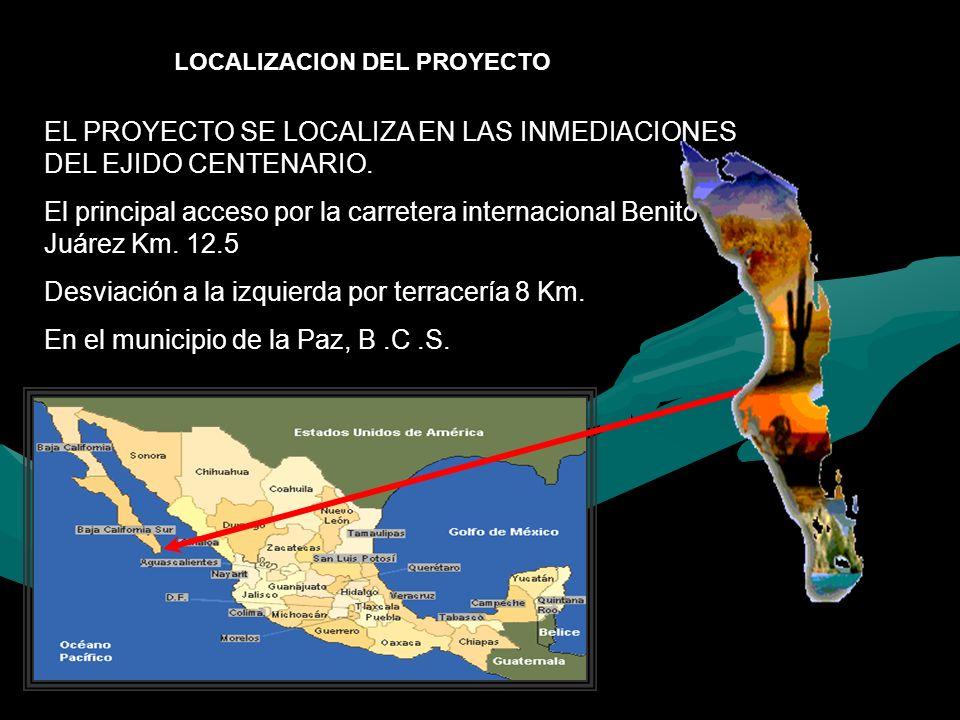EL PROYECTO SE LOCALIZA EN LAS INMEDIACIONES DEL EJIDO CENTENARIO. El principal acceso por la carretera internacional Benito Juárez Km. 12.5 Desviació