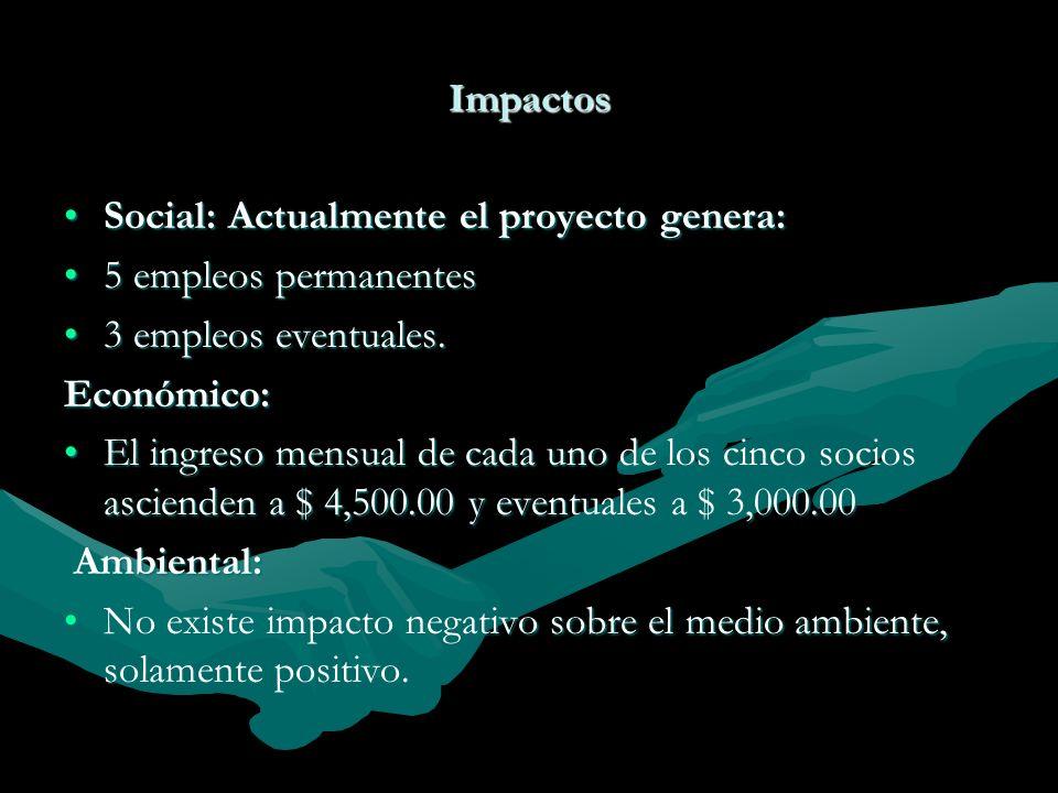 Impactos Social: Actualmente el proyecto genera:Social: Actualmente el proyecto genera: 5 empleos permanentes5 empleos permanentes 3 empleos eventuale