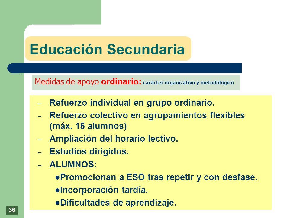 Educación Secundaria – Refuerzo individual en grupo ordinario. – Refuerzo colectivo en agrupamientos flexibles (máx. 15 alumnos) – Ampliación del hora
