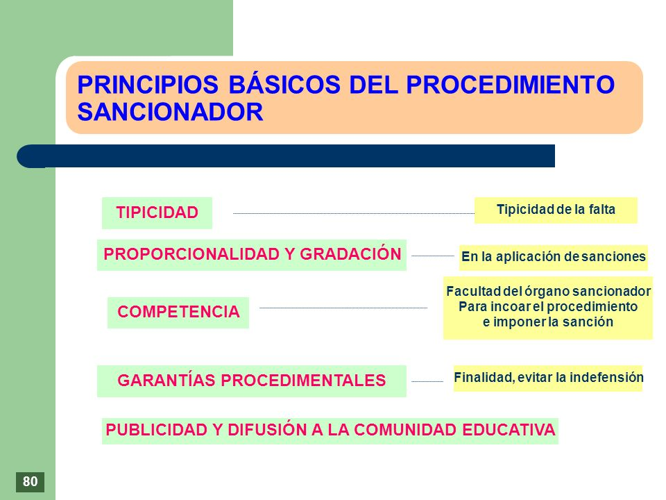 PRINCIPIOS BÁSICOS DEL PROCEDIMIENTO SANCIONADOR TIPICIDAD PROPORCIONALIDAD Y GRADACIÓN COMPETENCIA GARANTÍAS PROCEDIMENTALES PUBLICIDAD Y DIFUSIÓN A