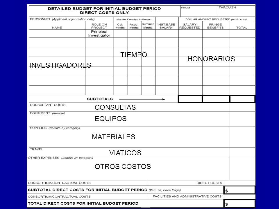 EQUIPOS MATERIALES VIATICOS OTROS COSTOS CONSULTAS HONORARIOS INVESTIGADORES TIEMPO