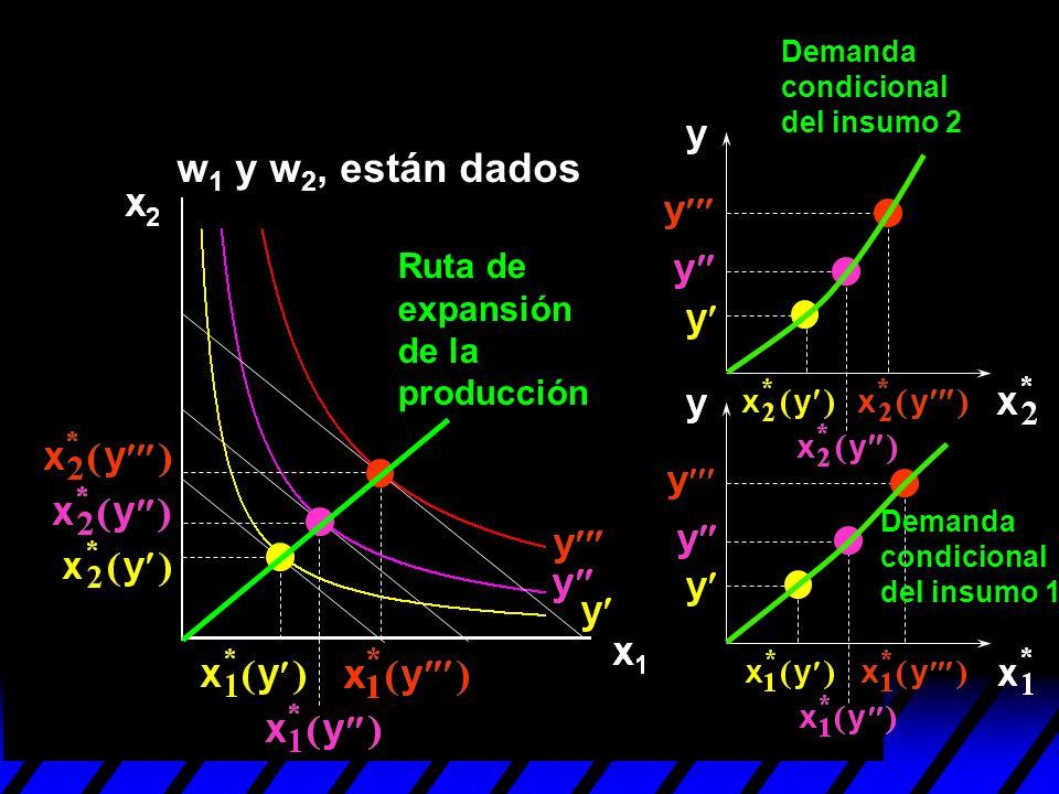 Demanda condicional del insumo 2 Demanda condicional del insumo 1 Ruta de expansión de la producción w 1 y w 2, están dados