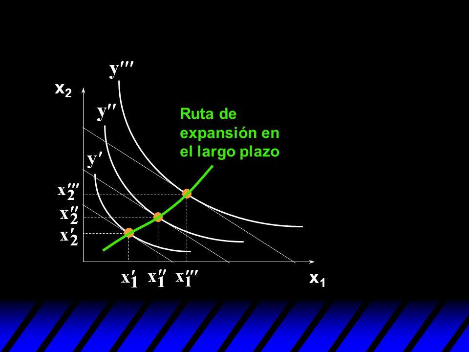 x1x1 x2x2 Ruta de expansión en el largo plazo
