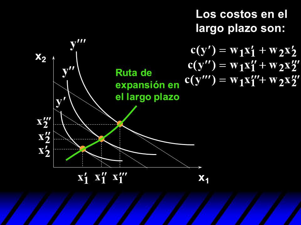 x1x1 x2x2 Los costos en el largo plazo son: Ruta de expansión en el largo plazo