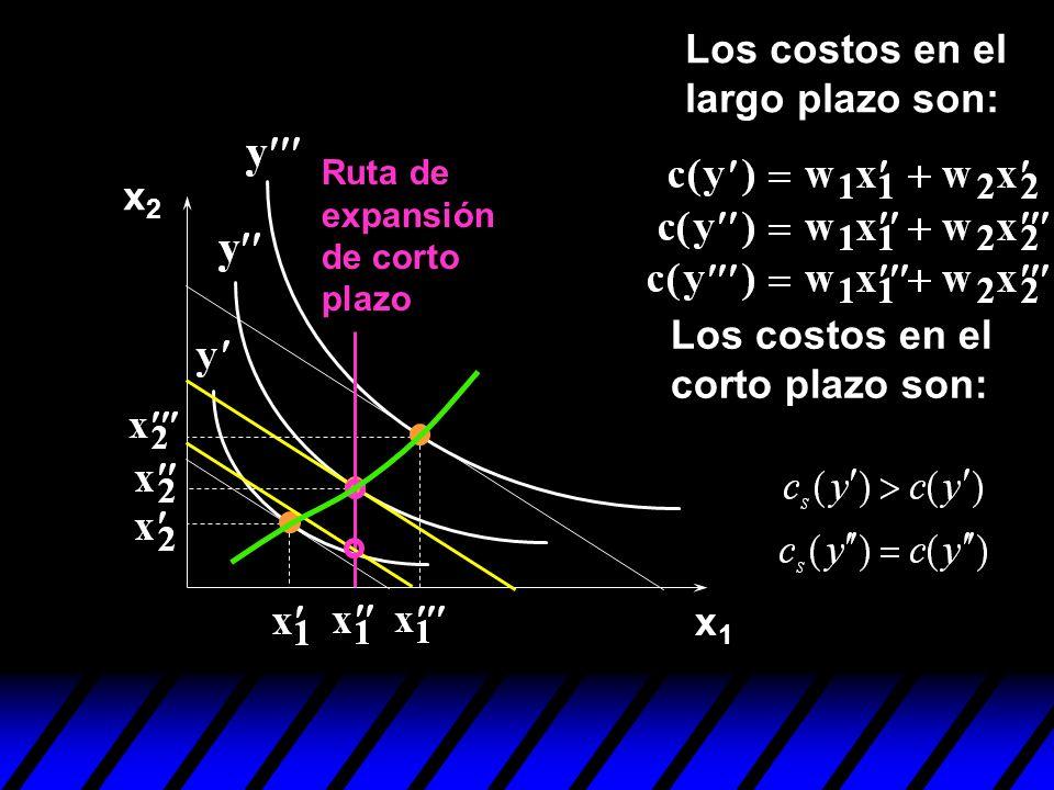 x1x1 x2x2 Los costos en el corto plazo son: Los costos en el largo plazo son: Ruta de expansión de corto plazo