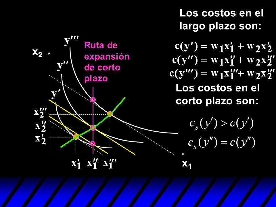x1x1 x2x2 Los costos en el corto plazo son: Ruta de expansión de corto plazo Los costos en el largo plazo son: