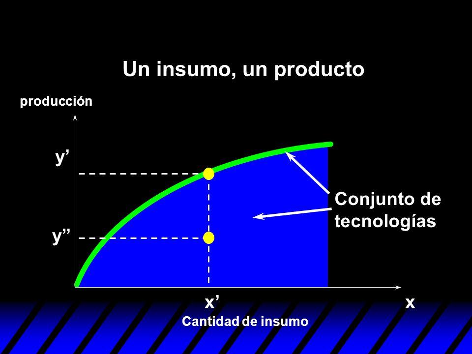 xx y y Conjunto de tecnologías Cantidad de insumo producción Un insumo, un producto